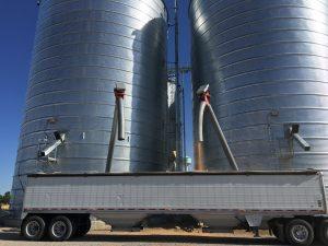 Truck getting grain